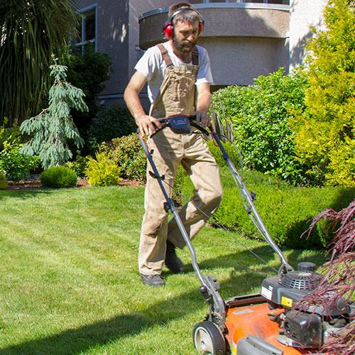 contact-1-diggz-gardening